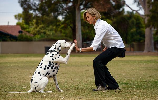 Dog whisperer adelaide